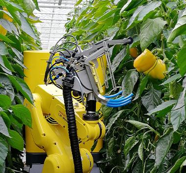 Les robots agricoles autonomes